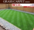 Artificial Grass Malaysia Price / Grass Carpet