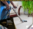 The Best Ever-carpet Cleaning Solution