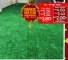 Chinese New Year Duoble Bonanza Promo For Grass Carpet