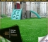 Grass Carpet For Your Kids / In Malaysia