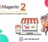 Join The Magento Ecommerce Bandwagon With Openwave!
