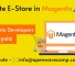 Hire Professional and Skilled Magento Developers in Kuala Lumpur from Openwave!